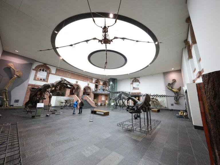 1 LED Lichtdecke Frankfurt Museum