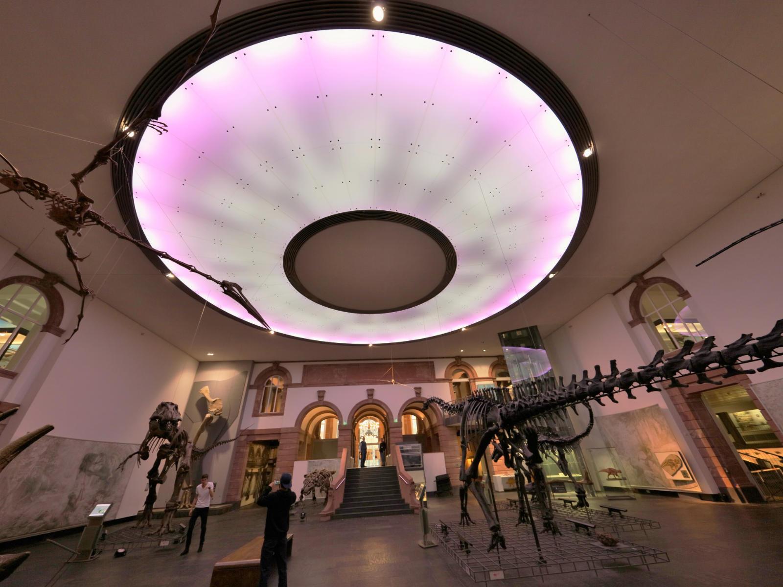 2 LED Lichtdecke Frankfurt Museum